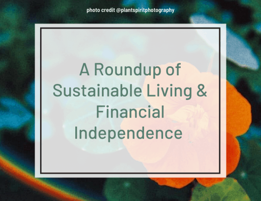 permaculture and financial independence