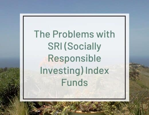 problems with SRI Index Funds