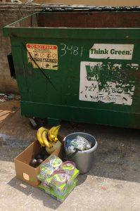 Dumpster Diving Food