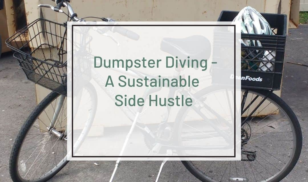 eco-friendly side hustle