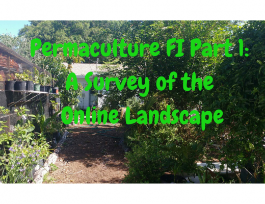 permaculture, financial independence
