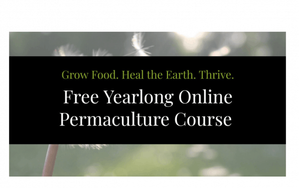 free permaculture