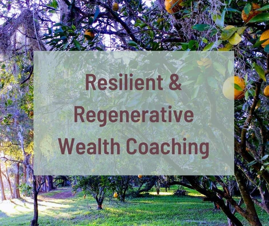 socially responsible financial coaching